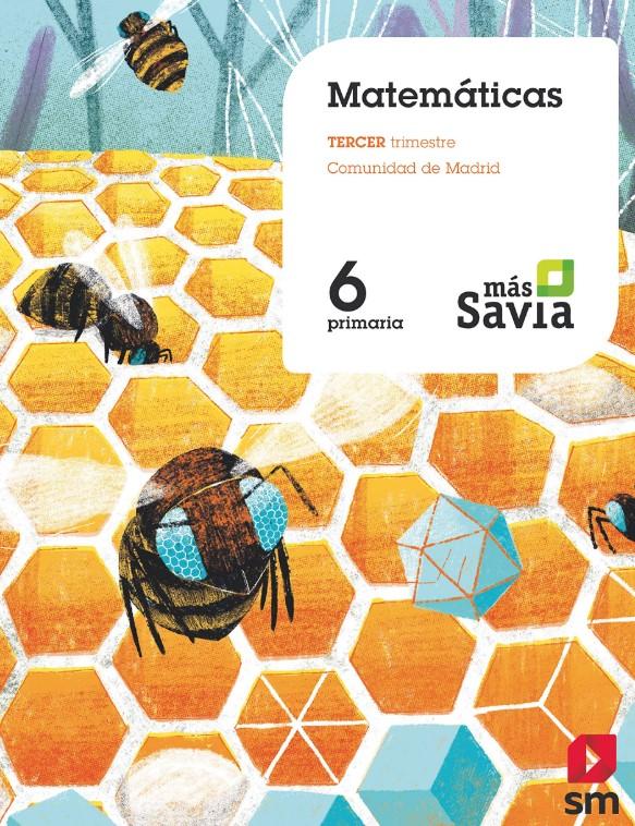 Matemáticas6 primaria SM SAVIA