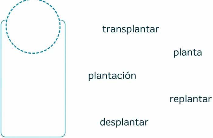 VACACIONES SANTILLANA 4º PRIMARIA - Imprimir libro PDF y soluciones 10