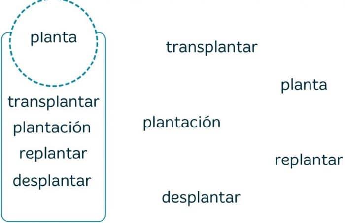 VACACIONES SANTILLANA 4º PRIMARIA - Imprimir libro PDF y soluciones 10.1