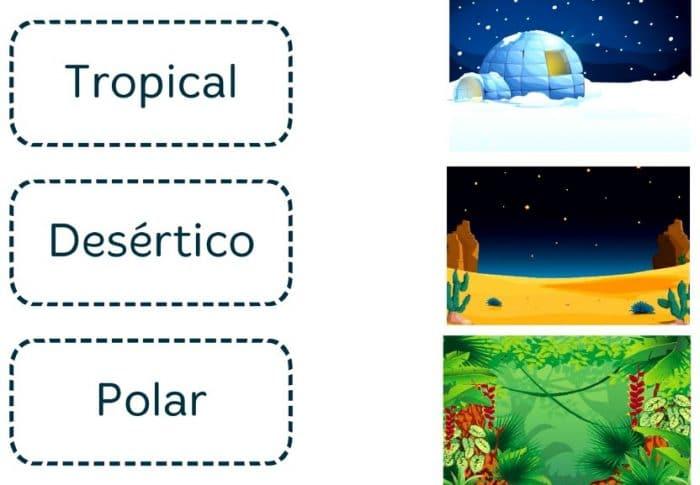 VACACIONES SANTILLANA 4º PRIMARIA - Imprimir libro PDF y soluciones 15