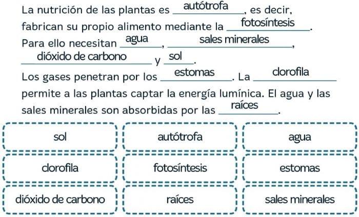 VACACIONES SANTILLANA 6º PRIMARIA - Imprimir cuaderno en PDF 26.1